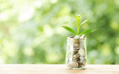 Regras para o imposto de renda do produtor rural em 2022